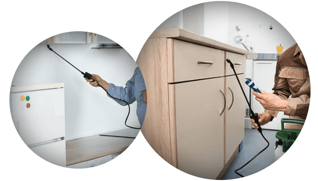 Residential Pest Control Melbourne