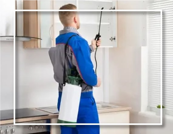 Pest Control Southern Suburbs Melbourne